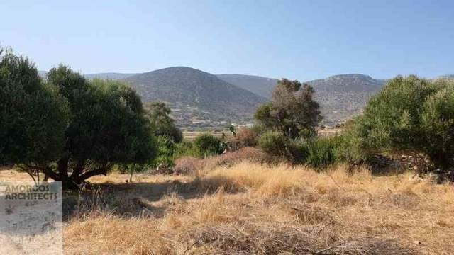 (For Sale) Land Agricultural Land  || Cyclades/Amorgos - 4.000 Sq.m, 18.000€