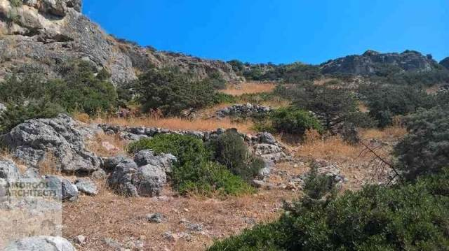 (For Sale) Land Agricultural Land  || Cyclades/Sxoinousa-Mikres Cyclades - 1.295 Sq.m, 30.000€